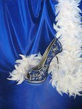 shoe and feather boa